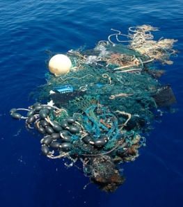 "Drifting ""Ghost Net"" of plastic, rope and various aquatic animals"