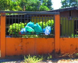 Garbage Day in Costa Rica