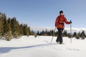 Snow shoes (iStock5966140)