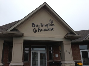 Burlington Humane Society - building