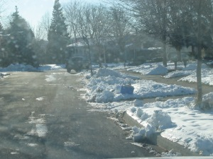 Can you spot the garbage bag? No luck? Hint: it's a white bag on first driveway