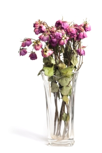 Put wilted cut flowers in the GreenCart. Keep the vase for reuse.